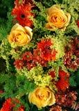 Tapete da flor Imagens de Stock