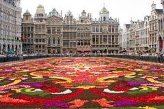Tapete da flor em Bruxelas Foto de Stock Royalty Free