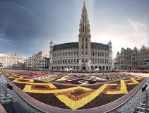 Tapete da flor em Bruxelas, Bélgica Foto de Stock Royalty Free
