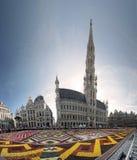 Tapete da flor em Bruxelas, Bélgica Fotografia de Stock Royalty Free