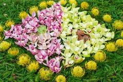 Tapete da flor Peça do tapete da flor no festival da flor de Madeira (Festa a Dinamarca Flor) Imagens de Stock Royalty Free