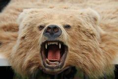 Tapete da pele do urso. imagens de stock