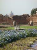 Tapete de flores azul com afinal limites antigos dos romanos e a abóbada de Saint peter roma Italy Fotografia de Stock Royalty Free