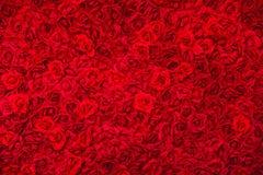 Tapete do backgound das rosas Fotos de Stock