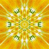 Tapete e tapete ensolarados, caleidoscópio amarelo da flor fotos de stock royalty free