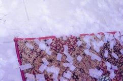 Tapete no assoalho de azulejo branco e nos confetes retangulares brancos Imagens de Stock