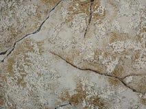 Tapeten różdżka Obraz Royalty Free