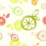 Tapetsera den citrusa sömlösa modellen, papper för trycktextilgåva Arkivfoto