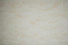 Tapetsera texturbakgrund i ljus sepia tonat konstpapper eller w Royaltyfria Bilder