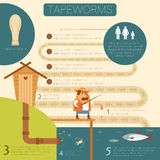 Tapeworm life circle banner Stock Photography