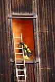 Tapfere Feuerwehrmänner mit Sauerstoff-Flasche steigt in ein Haus throug ein Stockbild
