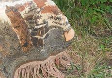 tapicería vieja en la hierba Imagen de archivo libre de regalías