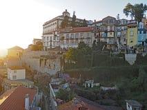 Tapijt van Ochtendgloriën, Porto, Portugal Royalty-vrije Stock Afbeelding