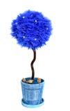 Tapinary träd för garnering Arkivbild