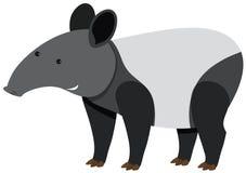 Tapir mignon se tenant sur le fond blanc Image stock