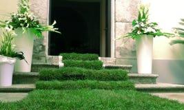 Tapis d'herbe Images libres de droits