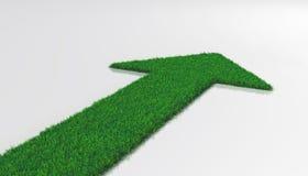 Tapis d'herbe avec la flèche Photo libre de droits