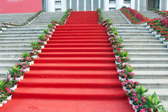 Tapis rouge Photo libre de droits