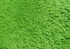 Tapis vert Photographie stock libre de droits