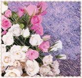 Tapisseriehintergrund mit stilisierten Rosen auf gestreiftem diagonalem Hintergrund des Schmutzes in den Pastellfarben lizenzfreie abbildung