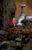 Tapkraan met waterdalingen Stock Afbeeldingen