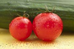 tappar tomatvatten Arkivfoto