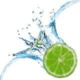 tappat nytt limefruktfärgstänkvatten Fotografering för Bildbyråer