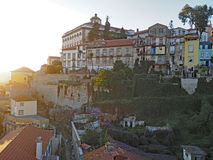 Tappeto delle ipomee, Oporto, Portogallo Immagine Stock Libera da Diritti