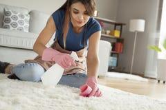 Tappeto di pulizia della giovane donna nella sala Fotografie Stock Libere da Diritti