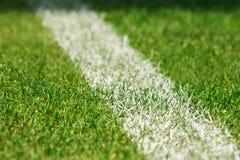 Tappeto erboso di calcio fotografie stock libere da diritti