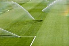 Tappeto erboso di irrigazione Fotografia Stock Libera da Diritti