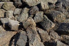 Tappeto erboso per fuoco Fotografia Stock Libera da Diritti