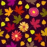 Tappeto floreale di ottobre Immagini Stock Libere da Diritti