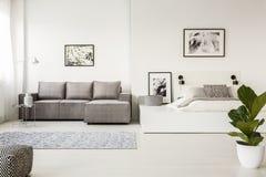 Tappeto modellato davanti allo strato d'angolo grigio nello spazio aperto int Fotografie Stock