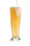 Tapping blond beer Stock Photo