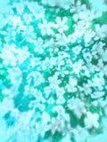 Tappning bedrövad blom- negativ design Arkivbild