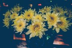 Tappning blommar att blomma, gulingblommor Arkivfoto
