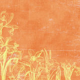 tappning för botaniska florals för bakgrund paper Arkivbild