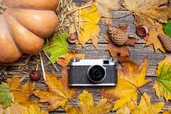tappning för 35mm kameraslr Royaltyfri Fotografi