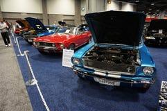 Tappning Ford Mustangs Fotografering för Bildbyråer