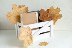 Tappning gamla böcker i en vit träask som isoleras Royaltyfri Fotografi