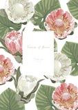 Tappning och lyxigt blom- vektorhälsningkort med blommor I vektor illustrationer