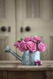 Tappning som bevattnar kan med rosor Arkivbilder