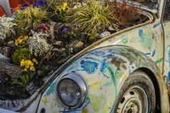 Tappning Volkswagen Beetle som dekoreras med vårblommor Arkivfoto