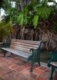 Tappningbänk i exotisk forntida trädgård i Miami Royaltyfri Fotografi