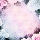 Tappningbakgrund en karaktärsteckning med rosor, rosa färg-blått Royaltyfri Foto