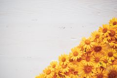 Tappningbakgrund för vitt bräde med gula blommor arkivfoton