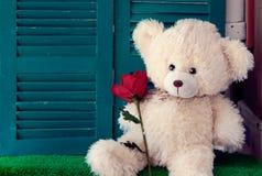 Tappningbjörnen leker med den rosa blomman, valentin, förälskelse Royaltyfri Foto
