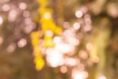 Tappningbokehbakgrund från naturligt Royaltyfri Fotografi