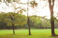 Tappningbokehbakgrund från naturligt Arkivfoto